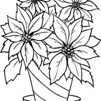 Christmas Flowers Coloring Pages