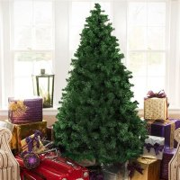 What Is The Best Real Christmas Tree To