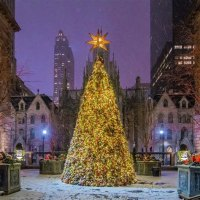 Where To See Christmas Tree In Nyc